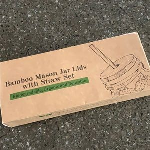 "Other - Mason jar ""regular mouth"" lids/straws"